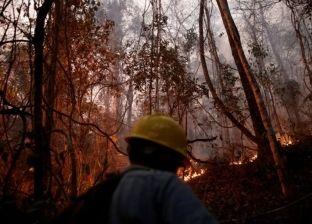 كارثة بيئية كبرى.. حرائق بوليفيا تؤدي إلى نفوق مليوني حيوان بري