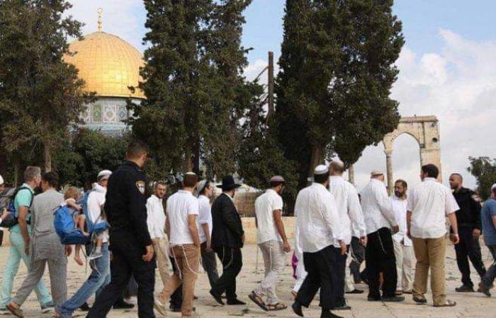 الاحتلال أغلقه 7 أيام ومنع الأذان 443 وقتاً.. الحرم الإبراهيمي ينتهك مجددا مع «أعياد اليهود»