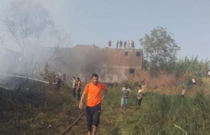#اليوم السابع - #حوادث - الدفاع المدنى بالوادى الجديد يسيطر على حريق بمزرعة فواكه بالداخلة