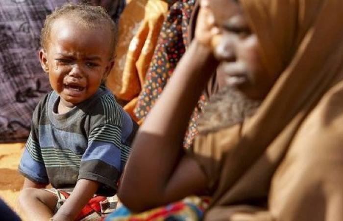 الأمم المتحدة: 97 ألف لاجئ وصلوا اليمن خلال الـ8 أشهر الأولى من 2019