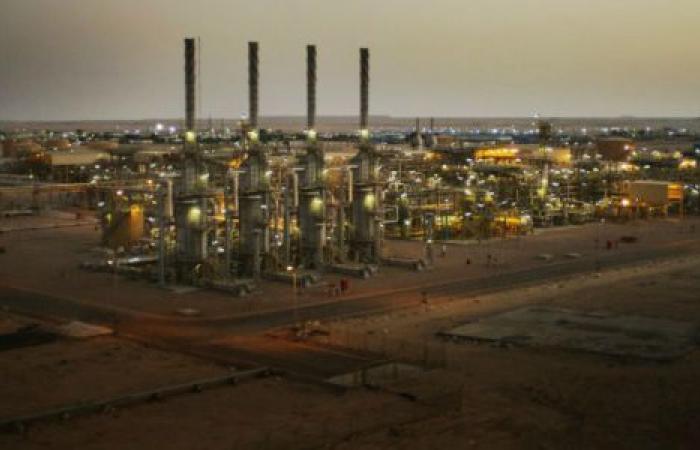 هل تخفض الحكومة أسعار الغاز الطبيعي لمصانع البتروكيماويات؟
