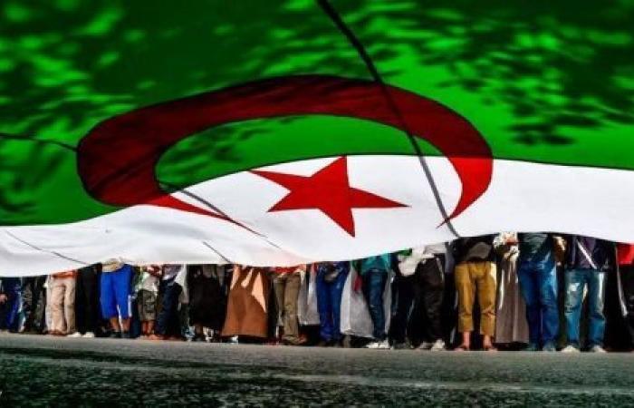 الجزائر.. «المجلس الدستوري» يتلقى طعون 9 مرشحين للرئاسة