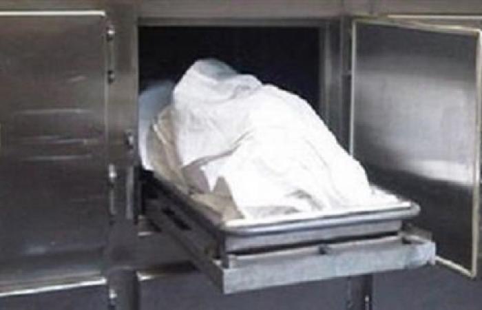 الوفد -الحوادث - مصرع شاب طعنه آخر بسكين في مشاجرة بالدقهلية موجز نيوز