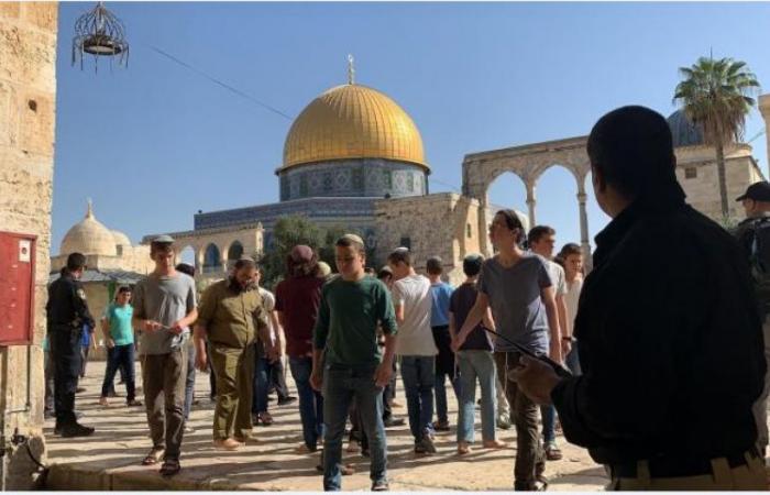في ذكرى حصار الهيكل المزعوم.. متطرفون يدنسون باحات الأقصى