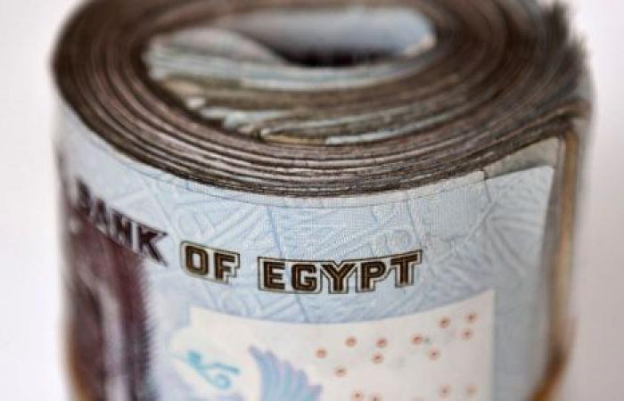 هل يصمد الجنيه أمام الدولار حتى نهاية 2020؟.. بلومبرج تجيب