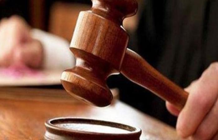 الوفد -الحوادث - المشدد٧سنوات للمتهم بخطف طفلة بالبساتين موجز نيوز