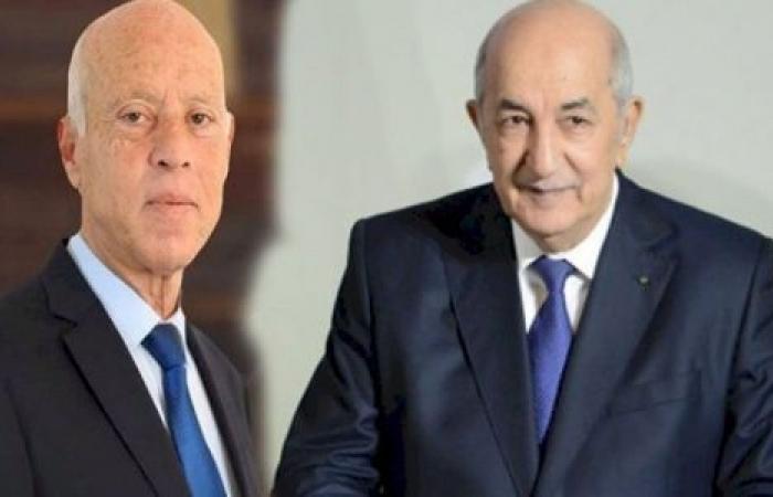 في زيارة قيس سعيد للجزائر.. ليبيا على مائدة الحوار