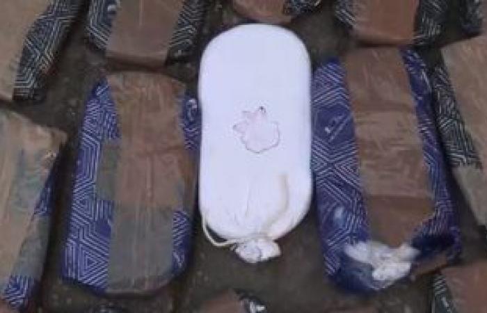 #اليوم السابع - #حوادث - ضبط 12 طربة حشيش بحوزة تاجر في مركز طهطا بسوهاج
