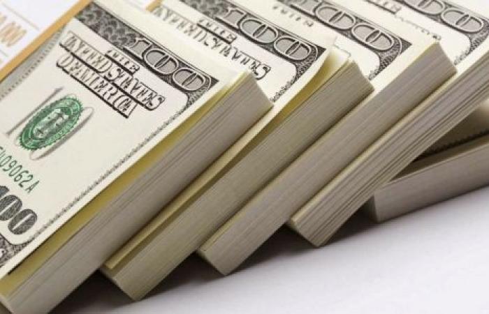 فيديو| استقرار سعر الدولار اليوم السبت 15-2-2020
