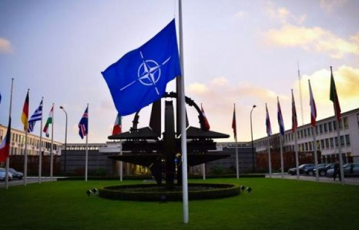 الهدنة بين أمريكا وطالبان.. كيف يراها «الناتو»؟