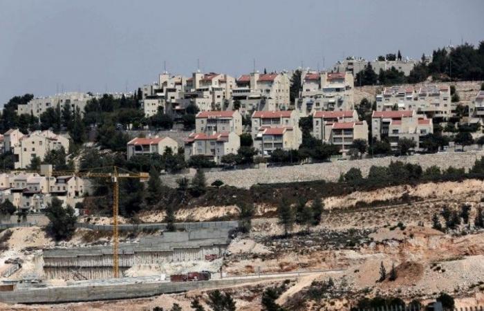 تجريف أراضٍ وهجوم للمستوطنين.. نابلس تنزف في فلسطين