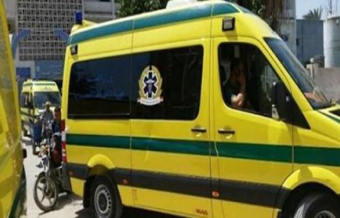 الوفد -الحوادث - مصرع وإصابة 12 شخصًا في حادث انقلاب تروسيكل بسوهاج موجز نيوز
