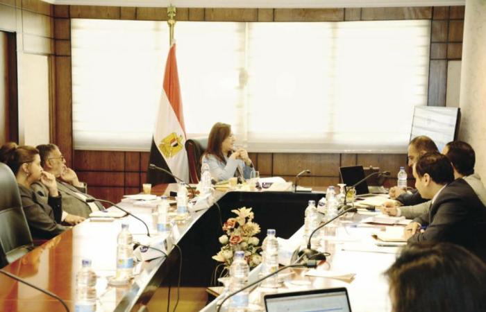المصري اليوم - اخبار مصر- «التخطيط» تناقش الخطة الاستثمارية للعام المالى المقبل موجز نيوز