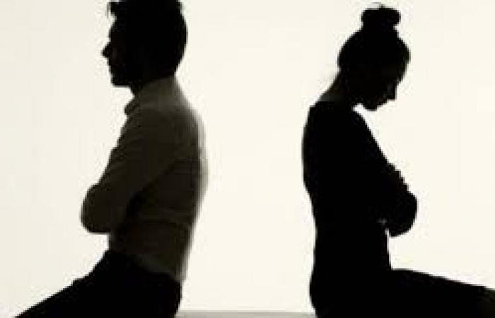 الوفد -الحوادث - زوج في دعوى طلاق: بتخوني مع جارها القديم موجز نيوز
