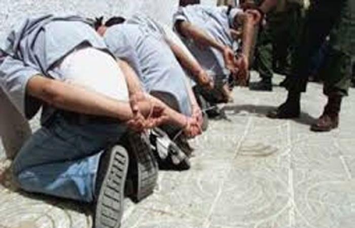 الوفد -الحوادث - ضبط عاطلين لاتجارهما في المخدرات بالسلام موجز نيوز