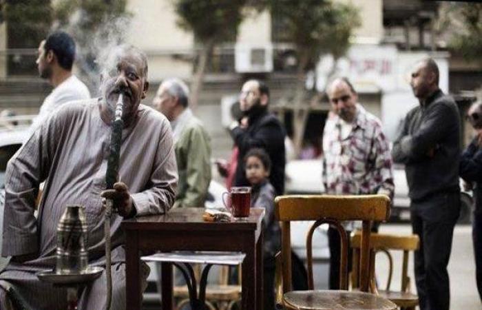 الوفد -الحوادث - فيديو.. تفاصيل ضبط صاحب شقة حولها لمقهى بالإسكندرية موجز نيوز