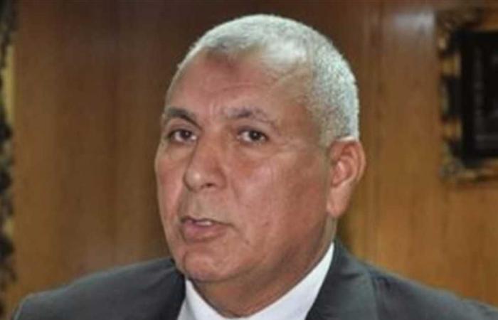 المصري اليوم - اخبار مصر- محافظ الوادي الجديد: 756 مخالطا لحالات مصابة بكورونا أنهوا فترة العزل المنزلي موجز نيوز