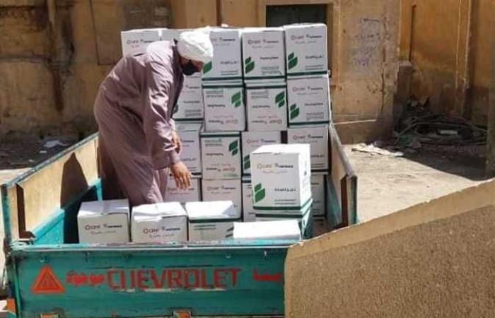 المصري اليوم - اخبار مصر- «عايشين بخيرها» مشروع لمساعدة الأسر التي تأثرت بجائحة كورونا (صور) موجز نيوز