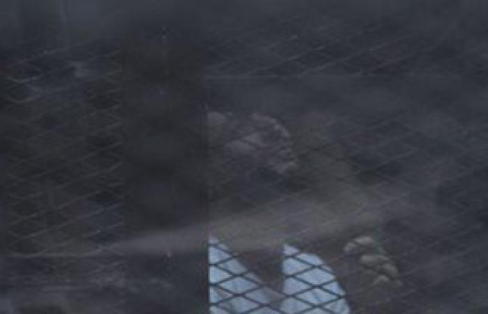 """#اليوم السابع - #حوادث - زى النهارده.. شاهد بـ""""أحداث الوزراء"""": صورت """"دومة"""" أثناء تعبئته المولوتوف"""