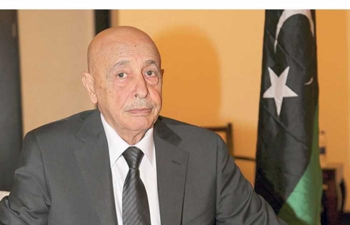 #المصري اليوم -#اخبار العالم - البرلمان الليبي: يحق لنا طلب الدعم العسكري من الأشقاء في مصر موجز نيوز