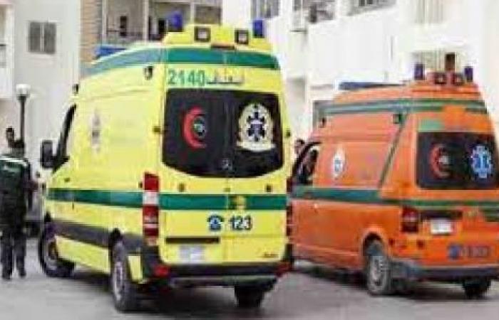الوفد -الحوادث - بسبب خلافات ثأرية .. مقتل أستاذة بجامعة المنيا وإصابة زوجها بالرصاص موجز نيوز