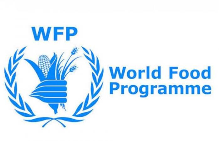 المصري اليوم - اخبار مصر- «الزراعة» تطلق مسابقتين للأطفال والشباب بمناسبة يوم الأغذية العالمي 2020 موجز نيوز