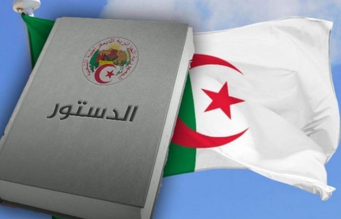بـ «لا للدستور».. لماذا يعارض إسلاميو الجزائر التعديلات؟ (فيديو)