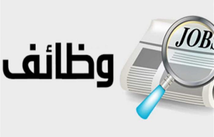 #المصري اليوم - مال - 2442 وظيفة خالية لجميع المجالات (التفاصيل والرابط) موجز نيوز