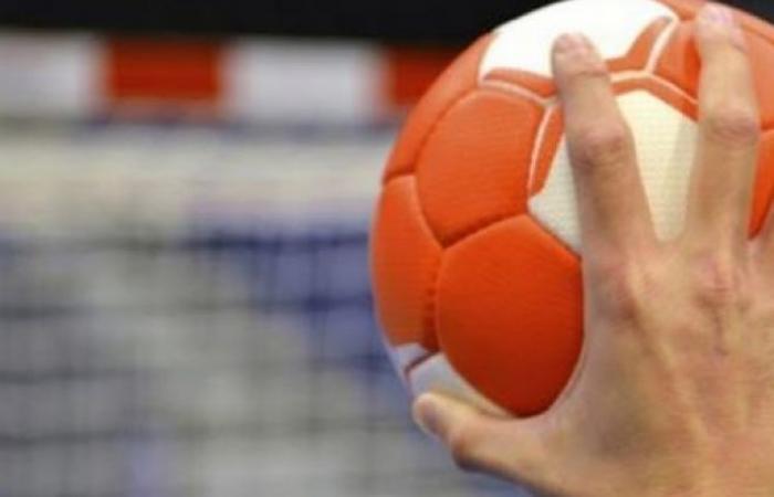 الوفد رياضة - تأجيل مباريات الحسم لبطولة دوري اليد موجز نيوز