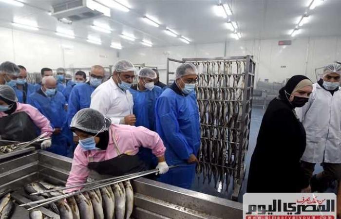 المصري اليوم - اخبار مصر- رئيس الوزراء يزور مصنعا للأسماك المحفوظة بالمنطقة الصناعية في بورسعيد موجز نيوز