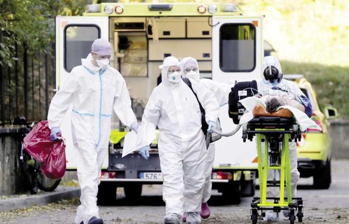 #المصري اليوم -#اخبار العالم - 54 مليون إصابة بـ«كوفيد-١٩» وحيوان «المنك» يثير ذعر العلماء موجز نيوز