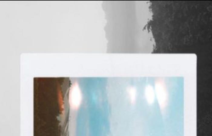#اليوم السابع - #فن - بسمة بوسيل تعتذر لتامر حسنى: اتهورت علشان بحبك