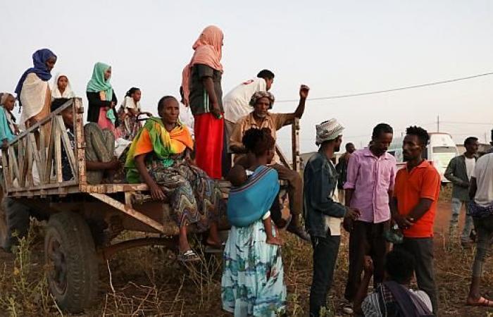 فيديو| نازحو تيجراي.. «كارثة انسانة» تنفجر على حدود إثيوبيا والسودان