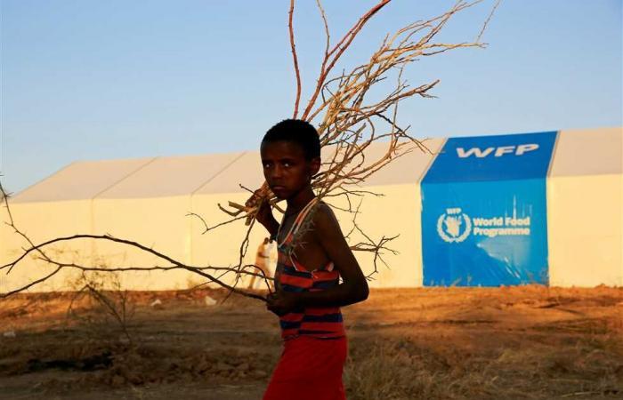 #المصري اليوم -#اخبار العالم - لجوء أكثر من 42 ألف إثيوبي إلى ولايتي كسلا والقضارف في السودان موجز نيوز