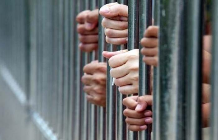 الوفد -الحوادث - المشدد لـ 3 متهمين بالاتجار فى البشر بالعجوزة موجز نيوز