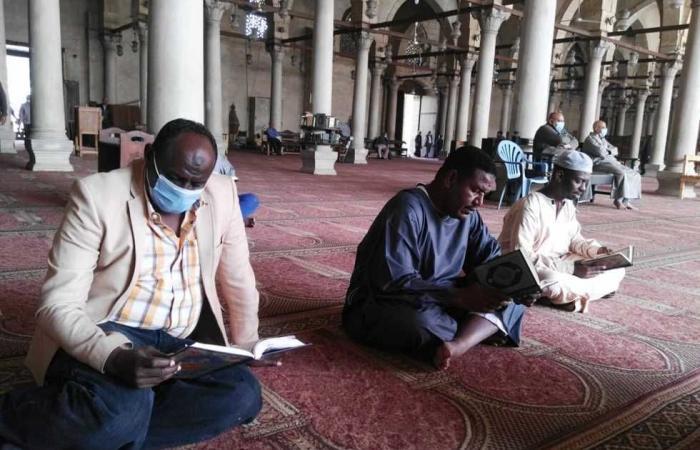 المصري اليوم - اخبار مصر- إعلاميون من السودان يزورون المعالم الإسلامية والمسيحية بالقاهرة موجز نيوز