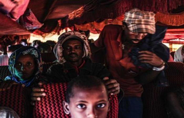 فيديو| في ظل الحرب الأهلية بتيغراي.. كيف تحمي مصر استثماراتها بـ إثيوبيا؟