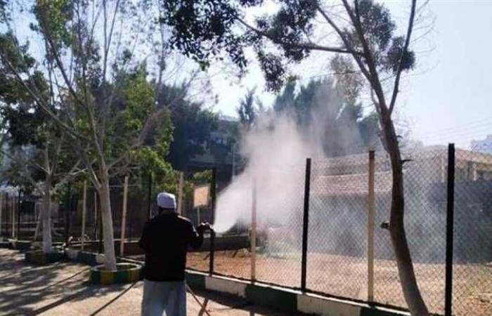 المصري اليوم - اخبار مصر- محافظ الشرقية يوجه بتكثيف حملات التطهير والتعقيم للوقاية من كورونا (صور) موجز نيوز