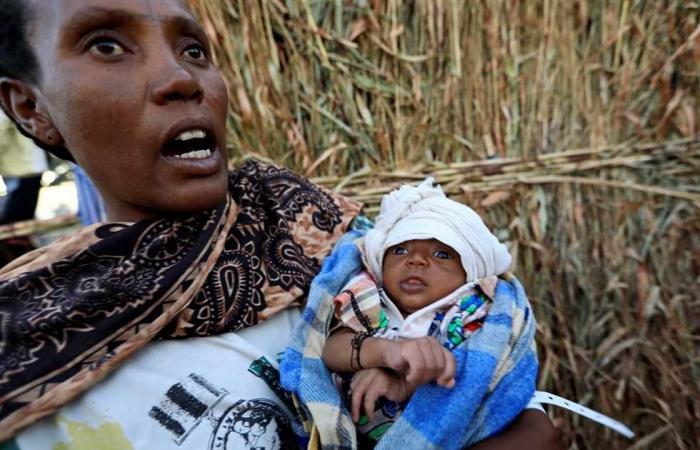 #المصري اليوم -#اخبار العالم - 62 ألف لاجئ إثيوبي لدى السودان منذ الصراع في إقليم تيجري موجز نيوز