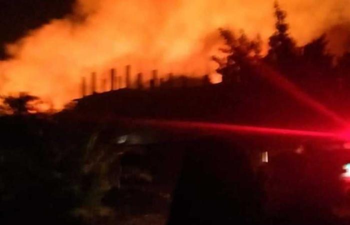 #المصري اليوم -#حوادث - السيطرة على حريق شب بمزارع النخيل في الوادي الجديد موجز نيوز