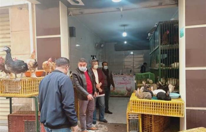 المصري اليوم - اخبار مصر- غلق 7 منشآت خالفت إجراءات كورونا خلال حملة على «بشائر الخير» في الإسكندرية موجز نيوز