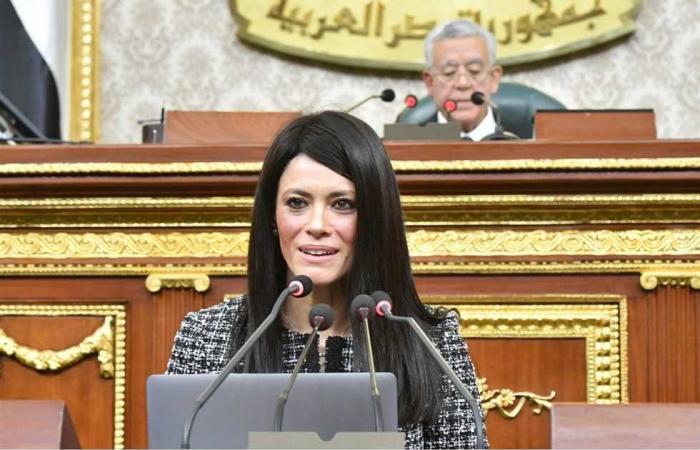 #المصري اليوم - مال - «التعاون الدولي» تعرض تفاصيل التمويلات التنموية خلال 2020 أمام لجنة الخطة والموازنة موجز نيوز