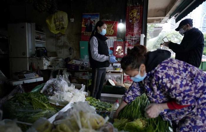 #المصري اليوم -#اخبار العالم - فريق تحقيق تقوده «الصحة العالمية» يزور مختبرا للفيروسات في ووهان بالصين موجز نيوز