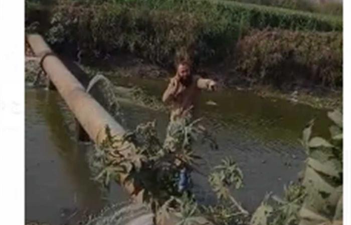 المصري اليوم - اخبار مصر- نائب يخاطب الري لإصلاح تسرب مياه من عامين ببني سويف (صور) موجز نيوز