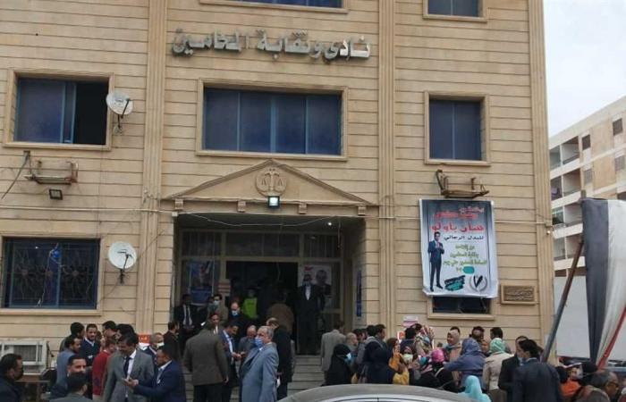 المصري اليوم - اخبار مصر- ماهر حمودة نقيبًا لمحامين المنوفية موجز نيوز