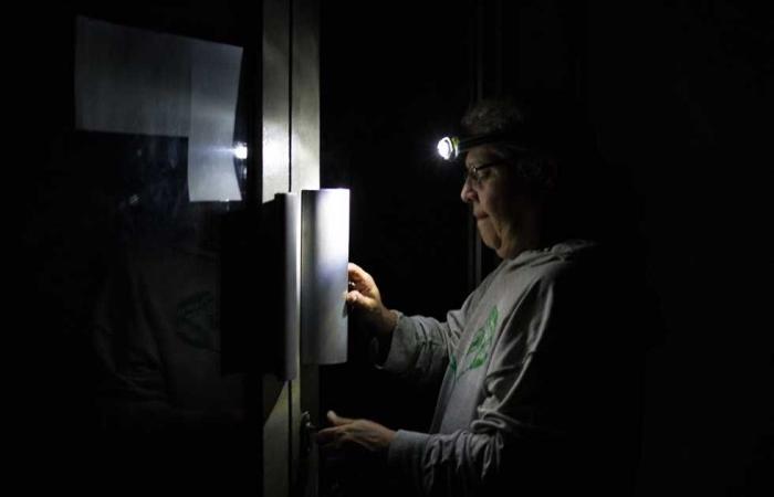 المصري اليوم - اخبار مصر- انقطاع الكهرباء عن 11 منطقة في الإسكندرية غدا لمدة 3 ساعات (ابحث عن منطقتك) موجز نيوز