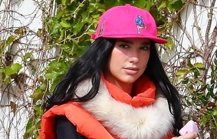 #اليوم السابع - #فن - دوا ليبا فى ظهور جديد مع أنور حديد بـ لوس أنجلوس بعد احتفالهما بعيد الحب