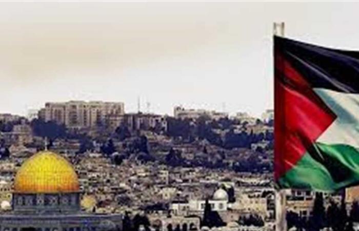 #المصري اليوم -#اخبار العالم - الأمم المتحدة: 2020 عام الانتكاسات للفلسطينيين موجز نيوز