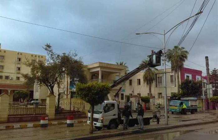 #المصري اليوم -#حوادث - وفاة شخص سقط عليه فرع شجرة في شبين القناطر موجز نيوز