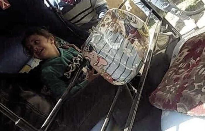 #المصري اليوم -#حوادث - القبض على سائق «توك توك» متهم بقتل أم وطفلها بـ«ساطور» فى المنيا موجز نيوز